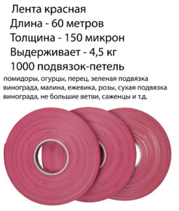 krasnaya opisanie 1h1 255x300
